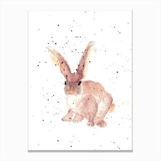 Cutie Canvas Print