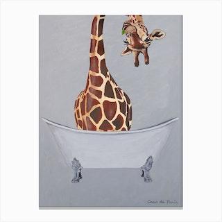 Giraffe In Bathtub Canvas Print