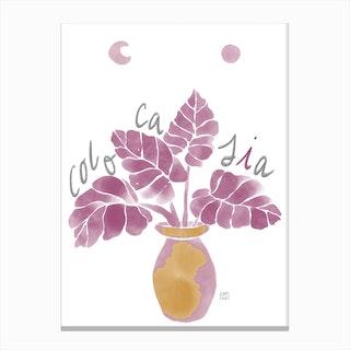 Colocasia Canvas Print