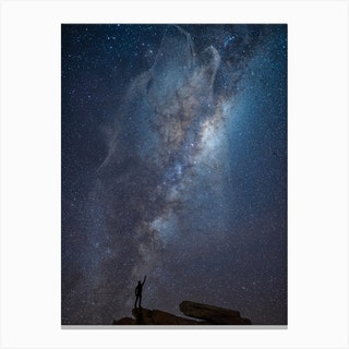 Reaching For The Wolf Canvas Print