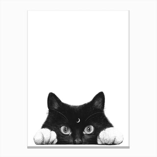 Night Cat Canvas Print