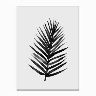 Tropic 2 Canvas Print