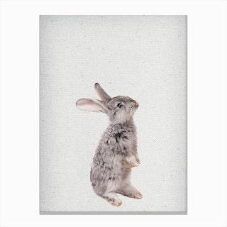 Frolein Rabbit II Canvas Print