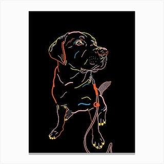Hugo The Dog Canvas Print