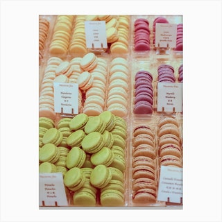 Tangerine Macarons Canvas Print