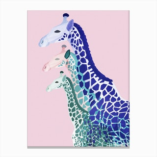 Giraffes in Pink Canvas Print