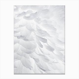 Feathers I Canvas Print