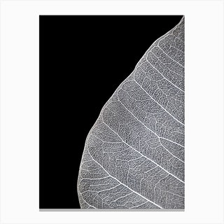 Veins Of Life 1 Black And White Canvas Print