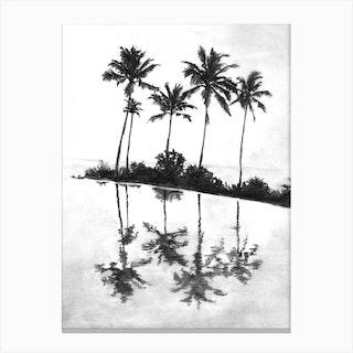 Palm Tree Reflections Black Canvas Print