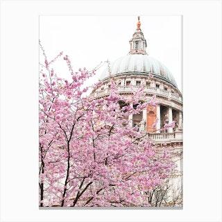 St Paul'S Spring Blossom Canvas Print