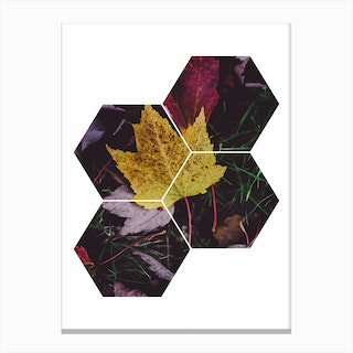 Leaf and Grass Hexagon Abstract Canvas Print