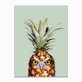 Pineapple Owl Canvas Print