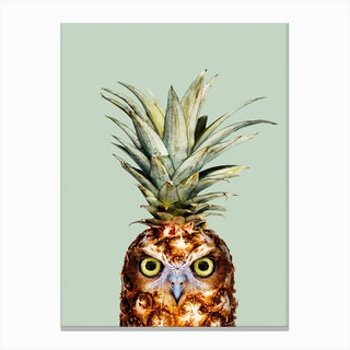 Pineapple Owl Canvas Print