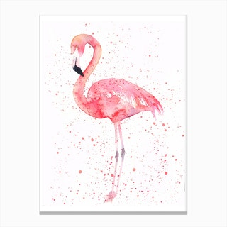 Flamingo  I Canvas Print