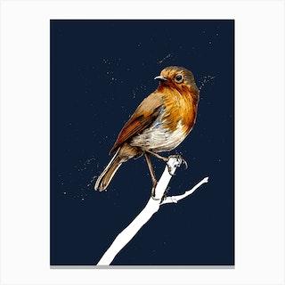 The Robin On Midnight Blue Canvas Print