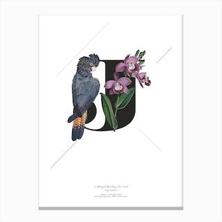 Botanical Alphabet J Canvas Print