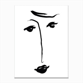 Why The Long Face Canvas Print