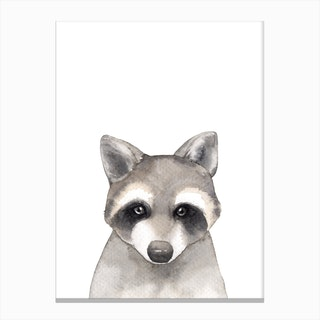 Nursery Raccoon Canvas Print