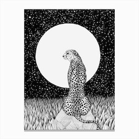 Cheetah Moon Canvas Print