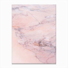 Blush Marble Canvas Print