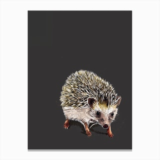 Kimchi The Hedgehog Canvas Print