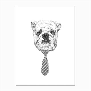 Cooldog Canvas Print
