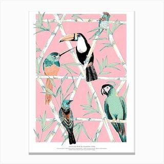Amazon Birds Canvas Print