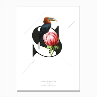 Botanical  Alphabet S Canvas Print