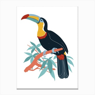 Toucan In A Tree Canvas Print
