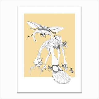 What Bugs You Weird And Wonderful Canvas Print