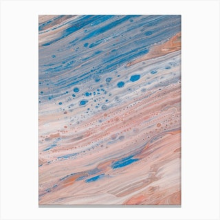 Salmon & Blue Delight Canvas Print