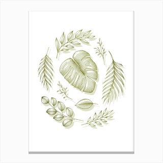 Boho Botanicals Canvas Print