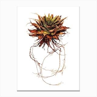 Whole Plant 02 Canvas Print