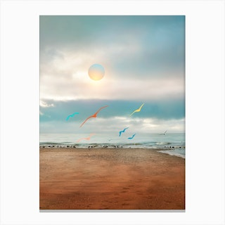 Colorful Seagulls In The Beach Canvas Print