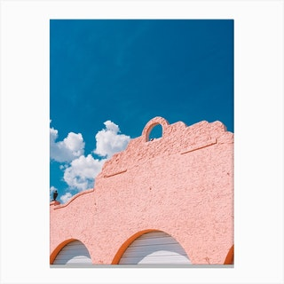 Pink + Blue Canvas Print