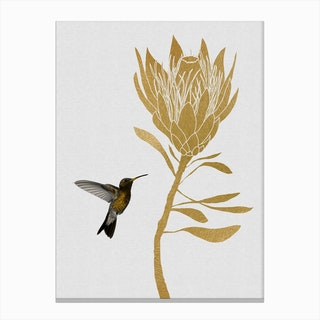 Hummingbird & Flower I Canvas Print