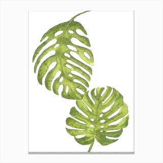 Two Green Floral Leafs Canvas Print