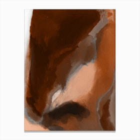 Brown Abstract Paint Canvas Print