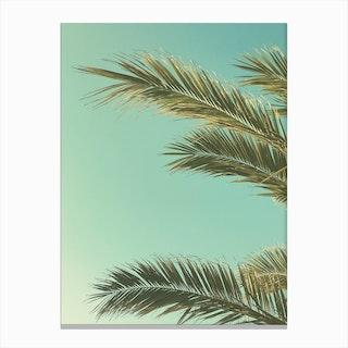 Autumn Palms II Canvas Print
