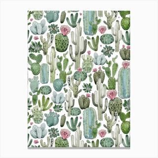 Cactus Field Canvas Print