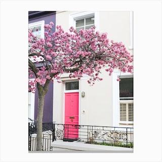 Pink Door Cherry Blossom Canvas Print