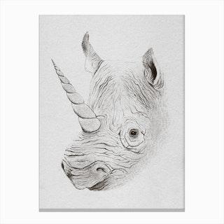 Rhinoplasty Canvas Print