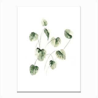 Drop Leafs Canvas Print