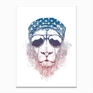 Wild lion Canvas Print