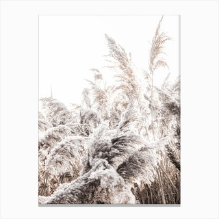 Grass Poster I Canvas Print
