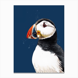 Clive The Puffin Canvas Print