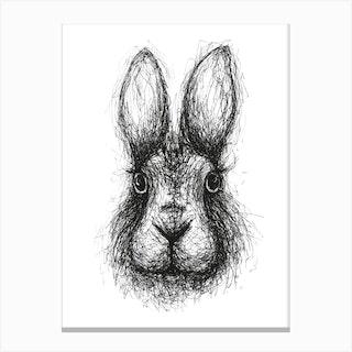 Scribble Rabbit Canvas Print