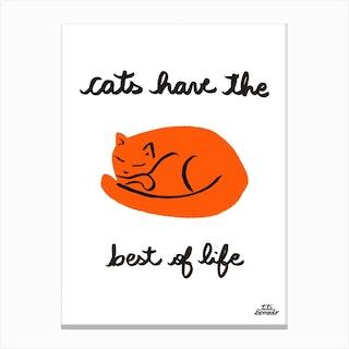 Cats Life Canvas Print