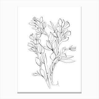 Floral Essence Canvas Print