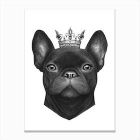 Queen French Bulldog Canvas Print
